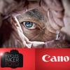 Vídeo Tutoriales de Canon