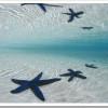 Las mejores fotos de mar