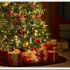 navidad-arbol-ftografia_thumb.jpg