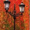 Fotografias espectaculares de otoño