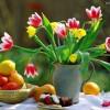 Primavera en fotos