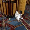 ramadan-2009-19