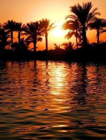 Fotos de Dubai (15)