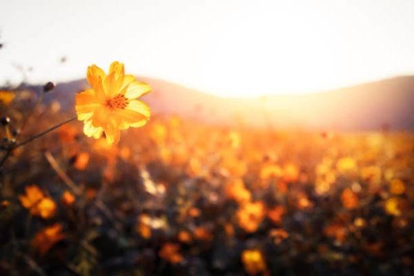 Consejos para hacer fotos al amanecer - Haciendofotos.com