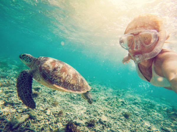 Consejos para fotografia submarina