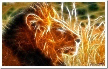 fondo de leon