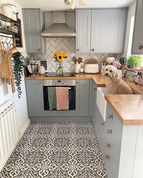 Cocina moderna con perro