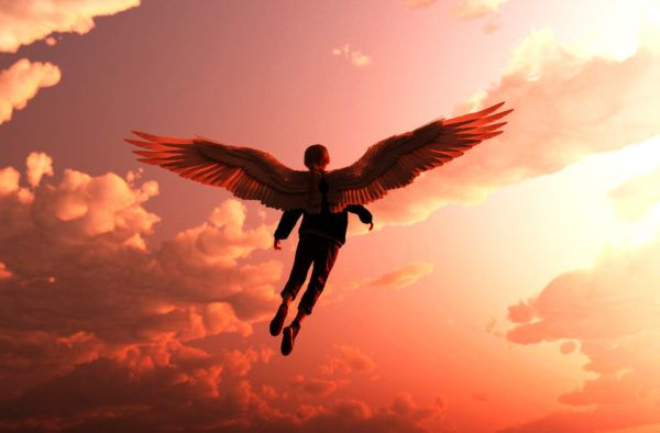 Instantáneas de los ángeles