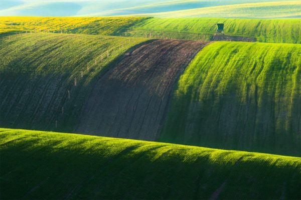 las-fotos-de-los-10-de-lugares-de-la-tierra-que-parecen-de-otro-planeta-Campos verdes de Moravia en la República Checa