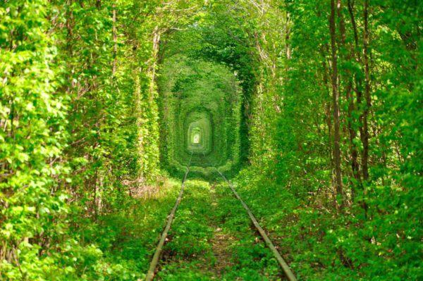 las-fotos-de-los-10-de-lugares-de-la-tierra-que-parecen-de-otro-planeta-El Túnel del amor en Ucrania