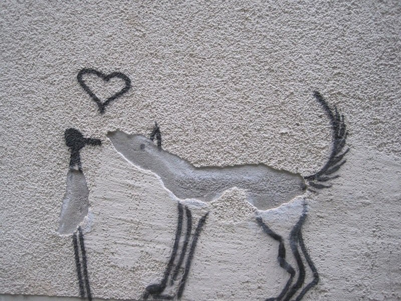 las-mejores-fotografias-de-arte-callejero-o-urbano-animales-pareds