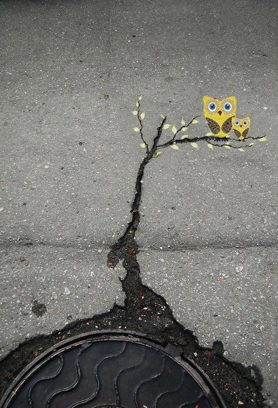 las-mejores-fotografias-de-arte-callejero-o-urbano-buho-agua.alcantarilla