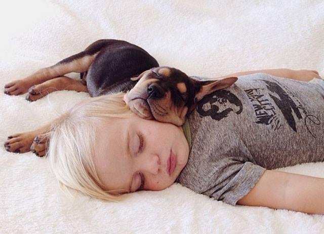 las-mejores-fotos-bebes-dumiendo-perros