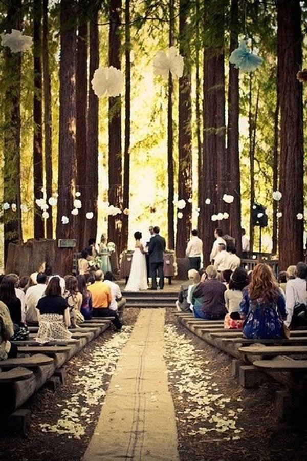 las-mejores-fotos-de-bodas-bosque