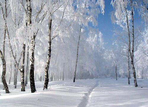 Resultado de imagen de Imágenes gratis de paisajes nevados