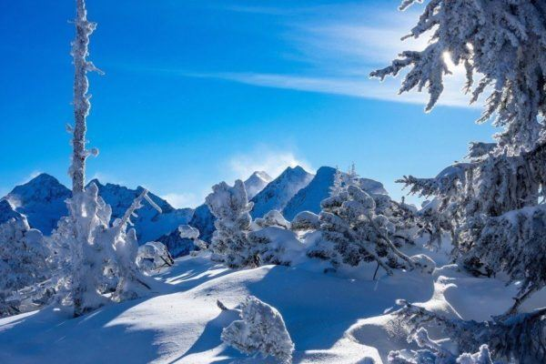 Fondo Escritorio Picos Montañas Nevadas: Las Mejores Fotos De Paisajes Nevados 2019