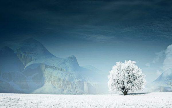 las-mejores-fotos-de-paisajes-nevados-helados