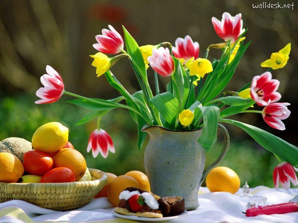 **hola primavera** Primavera