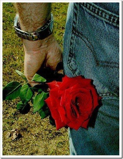 rosa hombre