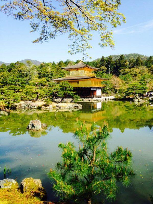 templo dorado