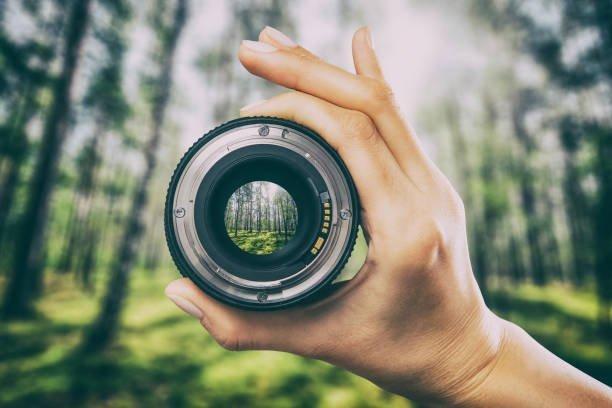 Tipos objetivos fotograficos macro